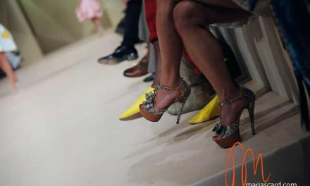 My Shoe Collection – The Financial Unhealthy Obsession
